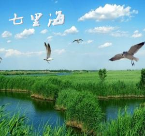 """""""七里海""""文学分站"""